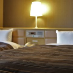 Ark Hotel Okayama - ROUTE-INN HOTELS - удобства в номере фото 2