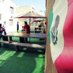 Отель Blue Pepper Hostel & Bar Мексика, Гвадалахара - отзывы, цены и фото номеров - забронировать отель Blue Pepper Hostel & Bar онлайн бассейн
