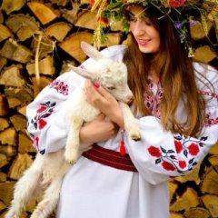 Гостиница Кодацкий Кош Украина, Писчанка - отзывы, цены и фото номеров - забронировать гостиницу Кодацкий Кош онлайн с домашними животными
