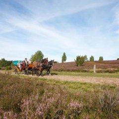 Best Western Hotel Heidehof фото 3