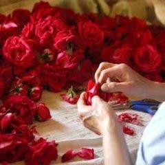 Ephesus Suites Hotel Турция, Сельчук - отзывы, цены и фото номеров - забронировать отель Ephesus Suites Hotel онлайн спа фото 2