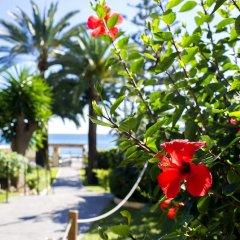 Отель Globales Gardenia Испания, Фуэнхирола - 1 отзыв об отеле, цены и фото номеров - забронировать отель Globales Gardenia онлайн пляж