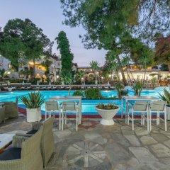 Отель Porfi Beach Hotel Греция, Ситония - 1 отзыв об отеле, цены и фото номеров - забронировать отель Porfi Beach Hotel онлайн фото 12