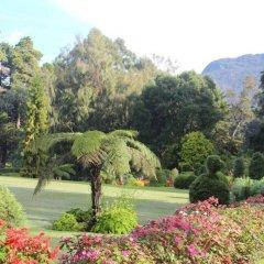 Отель The Hill Club Шри-Ланка, Нувара-Элия - отзывы, цены и фото номеров - забронировать отель The Hill Club онлайн фото 6