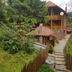 Гостиница Villa Milena фото 8