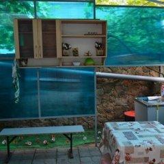 Гостиница Guest House on Gorkogo street 51 в Анапе отзывы, цены и фото номеров - забронировать гостиницу Guest House on Gorkogo street 51 онлайн Анапа фото 8