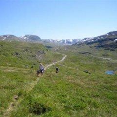Отель Seim Camping Норвегия, Одда - отзывы, цены и фото номеров - забронировать отель Seim Camping онлайн приотельная территория фото 2