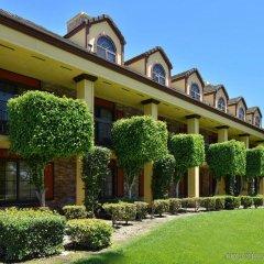 Отель Best Western Plus Raffles Inn & Suites фото 7