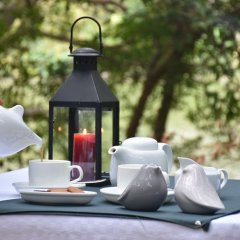 Отель Mahoora Tented Safari Camp - Kumana Шри-Ланка, Яла - отзывы, цены и фото номеров - забронировать отель Mahoora Tented Safari Camp - Kumana онлайн фитнесс-зал фото 2