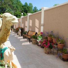 Гостиница Дубай фото 11