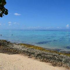 Отель Maison Te Vini Holiday home 3 Французская Полинезия, Пунаауиа - отзывы, цены и фото номеров - забронировать отель Maison Te Vini Holiday home 3 онлайн пляж фото 2