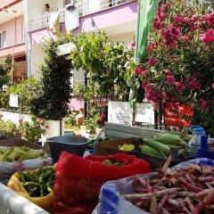 Kumbag Green Garden Pansiyon Турция, Текирдаг - отзывы, цены и фото номеров - забронировать отель Kumbag Green Garden Pansiyon онлайн фото 22