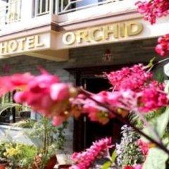 Отель Orchid Непал, Покхара - отзывы, цены и фото номеров - забронировать отель Orchid онлайн фото 17