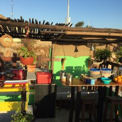 Baja's Cactus Hostel Кабо-Сан-Лукас с домашними животными