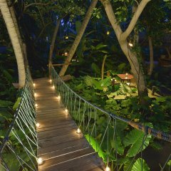 Отель Sun Island Resort & Spa Мальдивы, Маччафуши - 6 отзывов об отеле, цены и фото номеров - забронировать отель Sun Island Resort & Spa онлайн фото 8