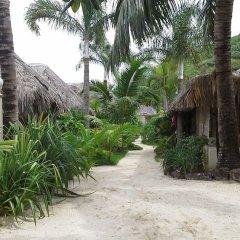 Отель Village Temanuata Французская Полинезия, Бора-Бора - отзывы, цены и фото номеров - забронировать отель Village Temanuata онлайн