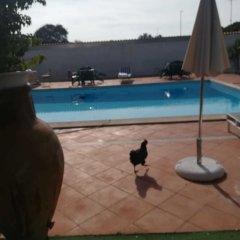 Отель B&B Villa Giovanni Италия, Казаль Палоччо - отзывы, цены и фото номеров - забронировать отель B&B Villa Giovanni онлайн с домашними животными