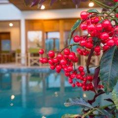 Отель Unity Villa Hoi An Хойан бассейн фото 3