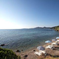 Отель Aurora Hotel Греция, Корфу - 1 отзыв об отеле, цены и фото номеров - забронировать отель Aurora Hotel онлайн приотельная территория фото 3