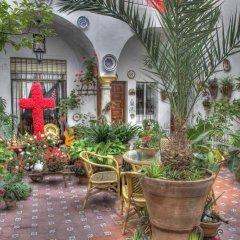 Отель Rincon de las Nieves фото 8