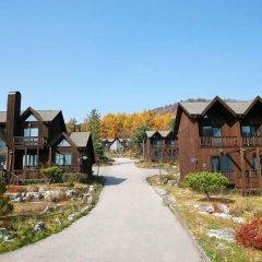 Отель Chalet Resort Южная Корея, Пхёнчан - отзывы, цены и фото номеров - забронировать отель Chalet Resort онлайн фото 4