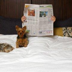 Seminole Hard Rock Hotel and Casino с домашними животными