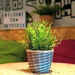 Отель Haggis Hostels Великобритания, Эдинбург - отзывы, цены и фото номеров - забронировать отель Haggis Hostels онлайн фото 3