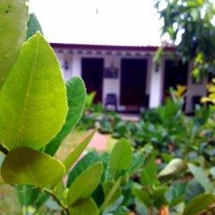 Sylvester Villa Hostel Negombo фото 13