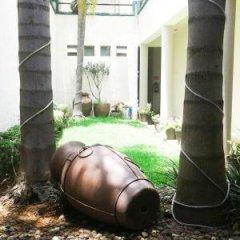 Отель Hostel Hostalife Мексика, Гвадалахара - отзывы, цены и фото номеров - забронировать отель Hostel Hostalife онлайн фото 9