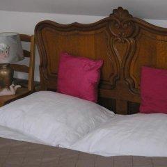 Отель Pension Groll Чехия, Пльзень - отзывы, цены и фото номеров - забронировать отель Pension Groll онлайн спа фото 2