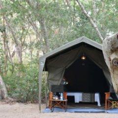 Отель Mahoora Tented Safari Camp - Kumana Шри-Ланка, Яла - отзывы, цены и фото номеров - забронировать отель Mahoora Tented Safari Camp - Kumana онлайн