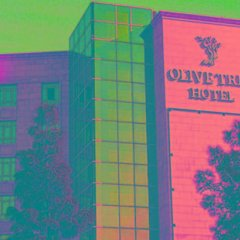 Olive Tree Hotel Amman фитнесс-зал фото 3
