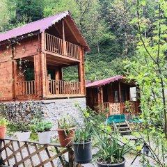Tanura Bungalows Турция, Чамлыхемшин - отзывы, цены и фото номеров - забронировать отель Tanura Bungalows онлайн фото 11