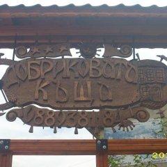 Отель Dobrikovskata Guest House Болгария, Чепеларе - отзывы, цены и фото номеров - забронировать отель Dobrikovskata Guest House онлайн приотельная территория