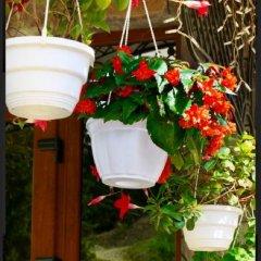 Гостиница Вилла Николетта фото 2