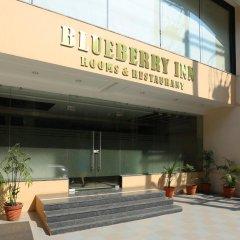 Отель Treebo Trend Blueberry Inn Индия, Райпур - отзывы, цены и фото номеров - забронировать отель Treebo Trend Blueberry Inn онлайн парковка
