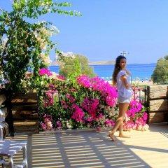 Liman Pansiyon Турция, Датча - отзывы, цены и фото номеров - забронировать отель Liman Pansiyon онлайн помещение для мероприятий