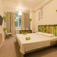 Гостиница Hostel Chemodan в Сочи отзывы, цены и фото номеров - забронировать гостиницу Hostel Chemodan онлайн комната для гостей фото 2