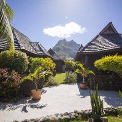 Отель Oa Oa Lodge Французская Полинезия, Бора-Бора - отзывы, цены и фото номеров - забронировать отель Oa Oa Lodge онлайн фото 8