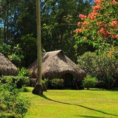 Отель Hibiscus Французская Полинезия, Муреа - отзывы, цены и фото номеров - забронировать отель Hibiscus онлайн фото 8