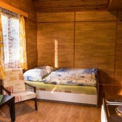 Отель Chalets Vitkova Hora Карловы Вары комната для гостей фото 2