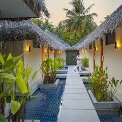 Отель Kurumba Maldives фото 10