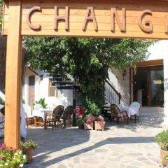 Changa Hotel фото 9