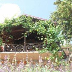 Kas Dogapark Турция, Патара - отзывы, цены и фото номеров - забронировать отель Kas Dogapark онлайн фото 13