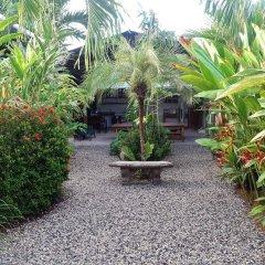 Отель Cabinas Tropicales Puerto Jimenez Ринкон фото 8