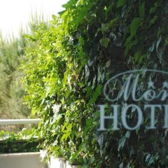 Hotel More фото 4