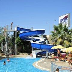 Lioness Hotel Турция, Аланья - отзывы, цены и фото номеров - забронировать отель Lioness Hotel онлайн бассейн фото 2