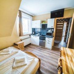 Отель Pokoje i Apartamenty Nad Potokiem Закопане в номере