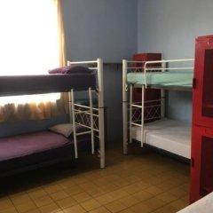 Отель Mezcalito Blue Hostel Мексика, Гвадалахара - отзывы, цены и фото номеров - забронировать отель Mezcalito Blue Hostel онлайн комната для гостей фото 5