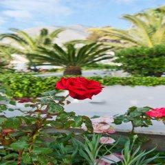 Отель Makarios Греция, Остров Санторини - отзывы, цены и фото номеров - забронировать отель Makarios онлайн фото 7